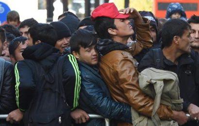 Philologen warnen vor Sex mit Flüchtlingen
