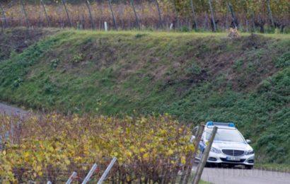 Spaziergänger findet Schuh von ermordeter Joggerin in Endingen