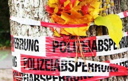 60.000 Euro Belohnung nach Freiburger Frauen-Morden