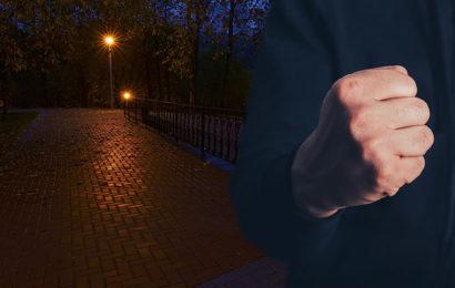 Betrunkene Asylwerber attackieren Familie in Park