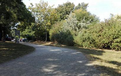 Vergewaltigung am Laaer Berg: Mann verhaftet