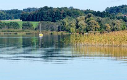 Täter schnell gefasst Joggerin am Simssee vergewaltigt