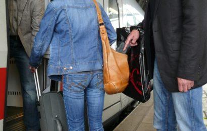 Bundespolizei stellen Taschendieb
