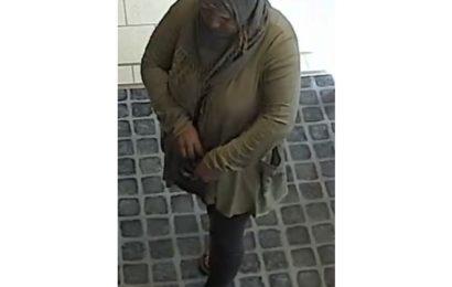 Bargeld aus Handtasche gestohlen