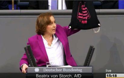 Beatrix von Storch zeigt, wo die Feinde der Demokratie wirklich sitzen