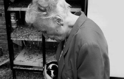 Seniorinnen abgelenkt und bestohlen