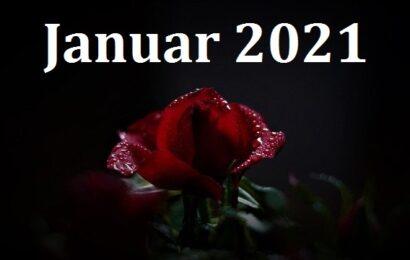 Pressemitteilungen vom Januar 2021